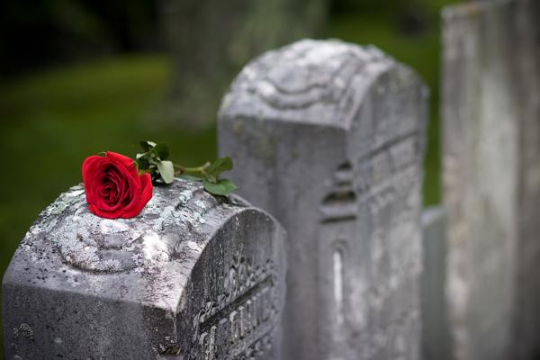enterrement-tombe-fleur.jpg